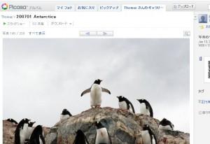 ペンギン界のカリスマ