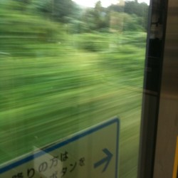 photo_5.jpg